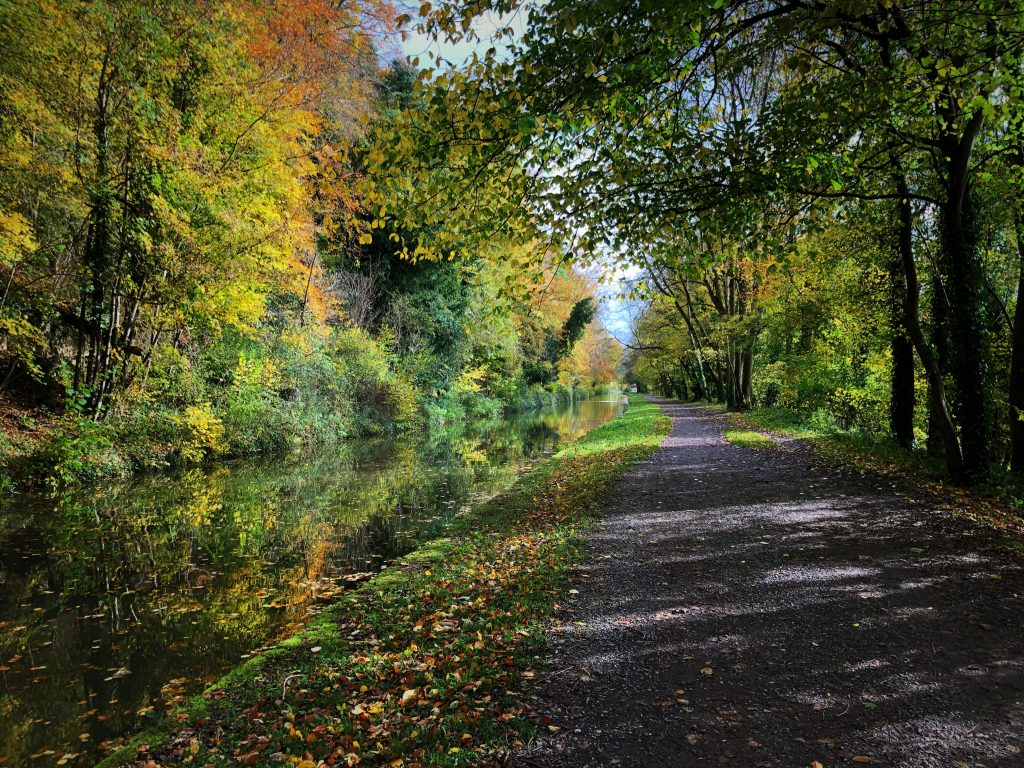 Landscape Character - Canal path